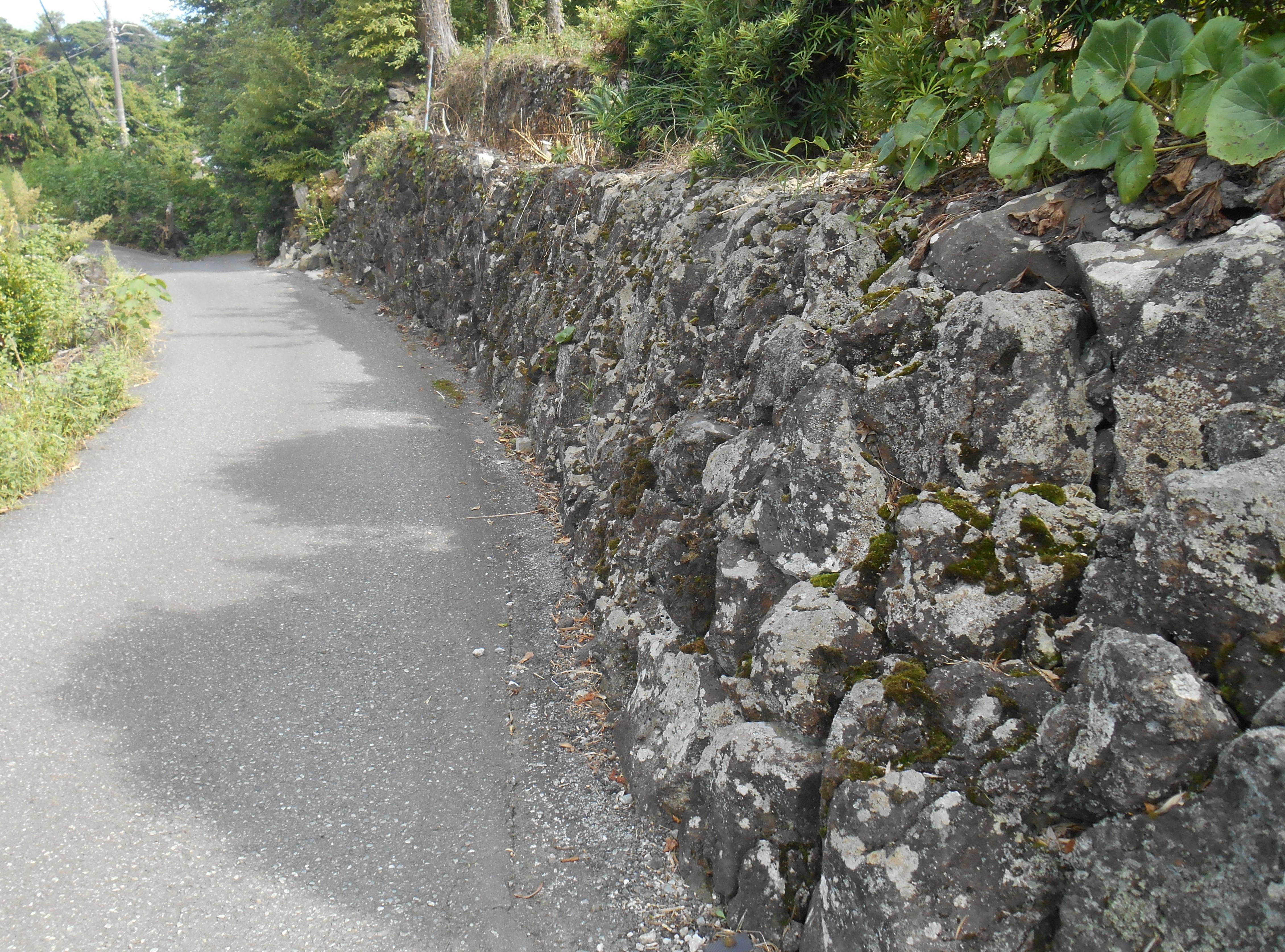 築城石がある坂道